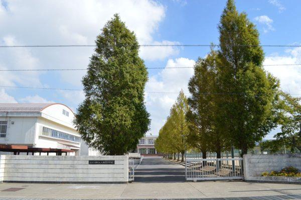 八幡東中学校 約2.3km
